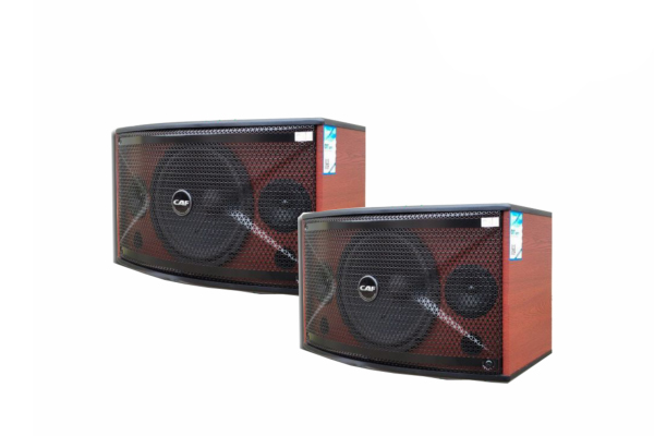 Loa karaoke CAF TW-3010