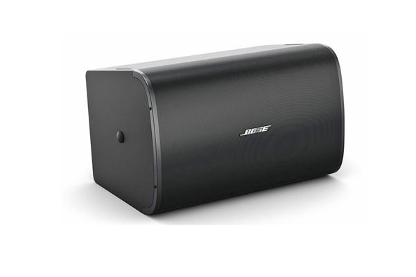Loa Bose DesignMax DM10SE-sub